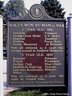 A rear Thoroughbred racehorse named Man o'War. What a truly great and remarkable racehorse...