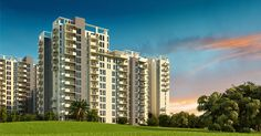 Buzz NCR, Buzz India, Buzz Delhi: 2/3/4 BHK Flats Sikka Kaamya Greens Noida Extensio...