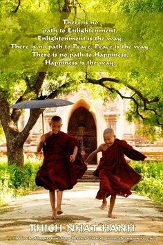 """There is no path to Enlightenment, Enlightenment is the way. There is no path to Peace, Peace is the way. There is no path to Happiness, Happiness is the way."" —Thich Nhat Hanh www.pinterest.com/QuantumGrace ..*"