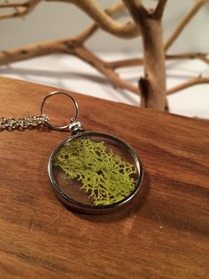 Real moss necklace  botanical specimen pendant  by DoodleButton