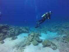 Kuvahaun tulos haulle joki sukellus