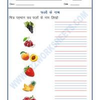 320 Best Free Hindi Grammar worksheets/Hindi Worksheets