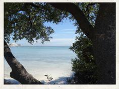 Wonderful Coco Plum Beach; Marathon