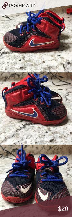 d16e9a5ea31aa Infants Nike LJ shoes Gently used with a lot of life left! Smoke Pet