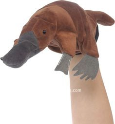 """Platypus is weird. maybe says little but when does it's kinda weird. lots of non sequitors. doesnt quite get it. stand in for slower audience members. only 6. 10"""" heavy shipping up to 20. possible 2nd round"""