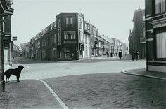 Utrecht op zondag | Vogelenbuurt 1957 | Rechts de Duifstraat. Links de Nieuwe Koekoekstraat