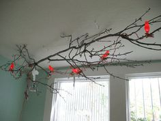 something to bring the outdoors in -- just have to find some bird string lights