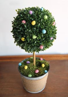 DIY Boxwood Easter Egg Topiary