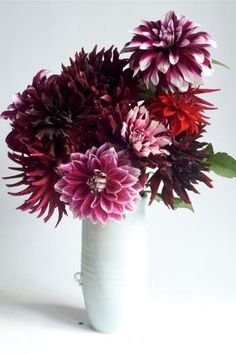 Helpful article about planting dahlias.