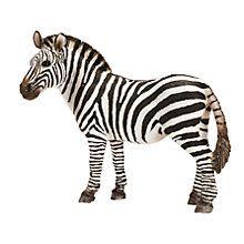 Buy Schleich Wild Animals: Zebra, Female Online at johnlewis.com