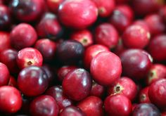 Cranberries Were a Native American Superfood