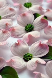 These gumpaste dogwood flowers are for sale at Diane's Cakes and More – they look so real!!