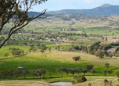 The New South Wales Department of Planning and Environment has recommended the Anglo American Drayton South coal mine proposal, to be located in Australia's Hunter Valley near Coolmore Australia and Darley, should be approved by …