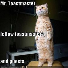 Mr. Toastmaster, fellow toastmasters, and guests...