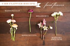 its flower recipe day on Utah Bride Blog