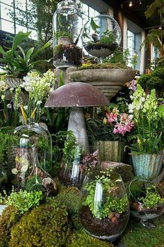 Promising to do for gardening what Urban Outfitters did for street style, Terrain is opening its second garden and home store in Westport. Garden Shop, Garden Art, Garden Design, Home And Garden, Indoor Garden, Indoor Plants, Outdoor Gardens, Garden Center Displays, Plantas Indoor