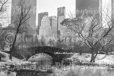 Snowfall by the Bridge, Central Park Photography, New York Print, Art Print, NY Art, Manhattan, Bedroom Decor, Living Room, Sizes Available from 5x7 to 20x30. A pretty, whimsical bridge in central park, right after snowfall. ***Photo comes un-matted and un-framed. Photos are shown in a room setting and are for size comparison. Last photo is a size comparison chart, is not the photo you are purchasing. Depending on the size you choose there may be some cropping of the image. Orders take 4...