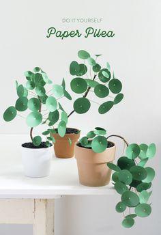 DIY Paper Pilea Plants