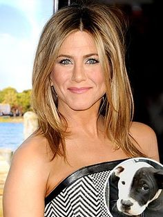 Jennifer Aniston Shoulder-length layers are more than just practical. As Jennifer Aniston proves, the lightweight look is also one of the sexiest hairstyles out there. Peinados Jennifer Aniston, Jennifer Aniston Haircut, Jenifer Aniston, Jennifer Aniston Style, Jennifer Garner, Jennifer Lawrence, Medium Hair Cuts, Medium Hair Styles, Long Hair Styles