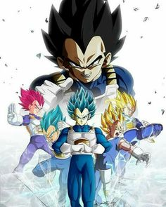 Vegeta the best ss of the word