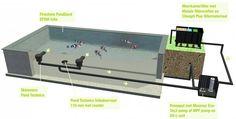 Koivijver - Alles over aanleg en onderhoud van vissenvijvers. Small Backyard Ponds, Backyard Water Fountains, Outdoor Ponds, Water Pond, Fish Pool, Diy Swimming Pool, Koi Fish Pond, My Pool, Small Water Gardens