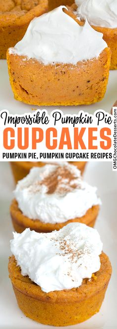 Pumpkin Pie Cupcakes, Pumpkin Pie Cheesecake, Pumpkin Pie Bars, Pumpkin Pie Recipes, Pumpkin Dessert, Pie Dessert, Pumpkin Pies, Spice Cupcakes, Crust Less Pumpkin Pie