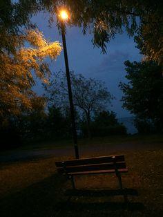 Outdoor Furniture, Outdoor Decor, My Photos, Bench, Celestial, Sunset, Park, Photography, Home Decor