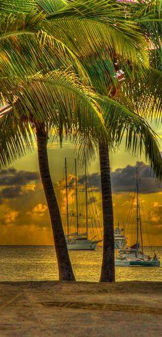Simpson Bay, St Maarten • photo: Karen Wallace