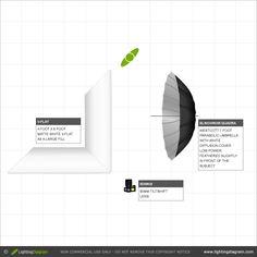 Portrait Photography Lighting Diagram