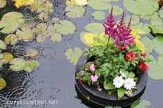 Homemade floating pond planters or mini islands are a lovely way to add pops of colourful flowers to your garden pond. You can also use them to sail garden art or candles. They are very pretty on a summer evening. Container Herb Garden, Container Gardening Vegetables, Container Flowers, Flower Planters, Flower Pots, Plant Containers, Rock Garden Plants, Pond Plants, Gravel Garden
