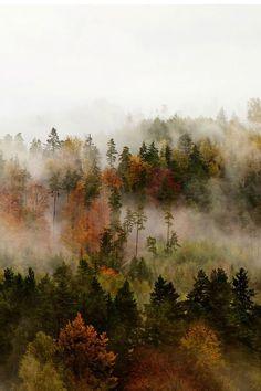 fog, by jan kvasnička