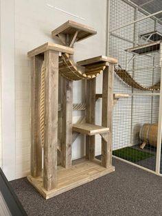 Diy Cat Tower, Cat Habitat, Cat Tree Plans, Cat Climbing Tree, Cat Fence, Animal Gato, Cat House Diy, Cat Playground, Cat Enclosure