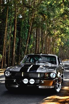 Shelby gt 500 #mustangclassiccars #shelbyclassiccars