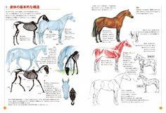 すべての動物画の基本は馬から! 英国でベストセラーとなった馬の絵の入門書、待望の日本語翻訳版がついに登場!  この本は、馬を上手に描きたい人のための指南書です。馬の基本的な身体のつくり、動きのしくみ、遠近法、色づかい、トレースや模写、肖像画や漫画の描き方 など、さまざまな項目について、描き方のコツをわかりやすく解説しています。さらに、鉛筆や水彩を使ったいろいろなテクニックも学べます。馬を描いてみよ うとするあらゆる年齢層の方に、初歩として最適な一冊です。  馬。それは、簡単に描けそうで意外に描けない動物。 「馬を描くと、ギャグマンガみたいになってしまう……」 「馬の肢(あし)は、まっすぐじゃないの?」 「顔が変になる。どうすればかっこいい馬が描けるのだろう」 「止まっている姿はまだしも、走っている様子が上手く描けない!」 「馬具や馬車って、つくりが複雑で描くのが難しそう」 などのさまざまな疑問に、馬のことを知り尽くした著者がやさしい語り口で丁寧に答えます。 ジェニファー・ベルの温かい言葉やイラストに触れれば、あなたもきっと馬の絵が描きたくなるでしょう。…