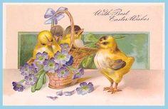 Free freebie printable vintage postcard Easter chicks
