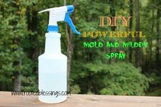 Powerful Mold and Mildew Spray - Natural health care for your home.  Dog- and child-safe, but do avoid contact with cats; they have no mechanism to break down and eliminate essential oils, and the EOs (any EOs) build up in their livers as toxins.