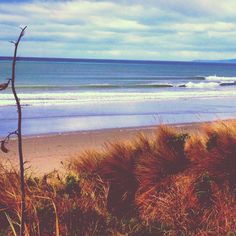 nature surf photography