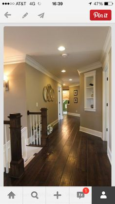 Floors molding & paint