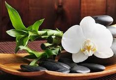 Find Spa Concept Zen Stones Orchid stock images in HD and millions of other royalty-free stock photos, illustrations and vectors in the Shutterstock collection. Thousands of new, high-quality pictures added every day. Massage Place, Good Massage, Face Massage, Massage Room, Preston, Grand Velas Riviera Maya, Le Reiki, Ohio, Herbs