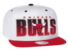Home Stand Chicago Bulls Snapback Cap by MITCHELL & NESS x NBA