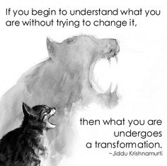 """<3 """"If you begin to understand what you are without trying to change it, then what you are undergoes a transformation."""" ~ Jiddu Krishnamurti"""