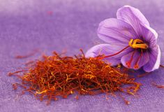 For an increased yield of Saffron production it is essential to source the best Wholesale Supplier of Crocus Sativus Bulbs. Crocus Sativus (Saffron Bulbs) need the right conditions to perform. Saffron Crocus, Saffron Flower, The Oatmeal, Saffron Benefits, Saffron Spice, Saffron Extract, Remedies For Glowing Skin, Salud Natural, Medicinal Plants