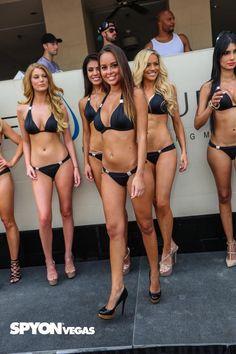 Picture from International Bikini Contest @ Wet Republic Ultra Pool in Las Vegas