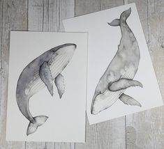 Humpback whale watercolour paintings set of by JustLikePictures