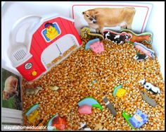 Farm Matching Sensory Bin & Farm Books