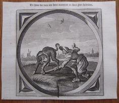 Original Kupferstich Niederlande Emblem Hund Knochen - 1659