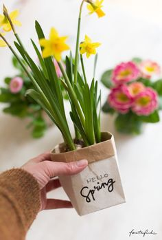 Little spring greetings - DIY plant pots from milk cartons - every day . - Little spring greetings – DIY plant pots from milk cartons – every day … the beautiful life Recycled Crafts Kids, Diy And Crafts, Crafts For Kids, Summer Crafts, Fall Crafts, Easter Crafts, Holiday Crafts, Fleurs Diy, Fathers Day Crafts