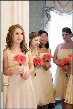 Creative Photography- coral gerbera daisies bridesmaid's bouquets but would want either white or blue!
