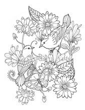 Coloring Pages Of Flowers And Birds Adult Coloring Page 2 Birds And Butterfly Floral Design State Flower And State Bird Coloring Page Bird Coloring Birds And Flowers Coloring Pages Pictures Coloring Pages For Grown Ups, Spring Coloring Pages, Adult Coloring Book Pages, Printable Adult Coloring Pages, Coloring Pages To Print, Coloring Books, Colouring, Coloring Pages Nature, Mandala Coloring