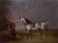An Arab horse in an exotic landscape by Charles Towne